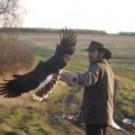 Wirtualne polowanie – Cabela's Big Game Hunter 2012